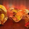Dans Oriental Belly Dance Trupa The Sky Iasi by Adrian Stefan