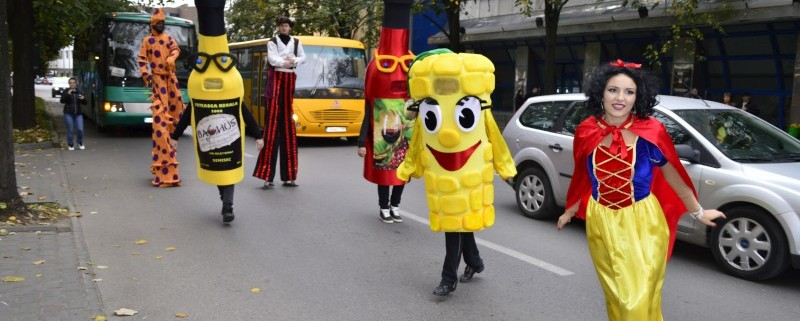 Parada Stradala Streets Parade Trupa de Dans si Entertainment The Sky Iasi by Adrian Stefan