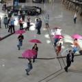 Flash Mob Trupa de Dans si Entertainment The Sky Iasi by Adrian Stefan PALAS MALL